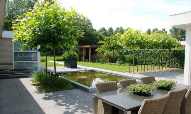 Een moderne tuin met een landelijke tintje